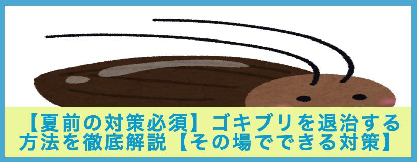 【夏前の対策必須】ゴキブリを退治する方法を徹底解説【その場でできる対策】